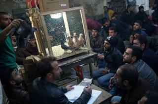 Auctioneer Kadir Sakizci, 28, conducts a sale at a pigeon auction in Sanliurfa, Turkey
