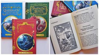 New dyslexia friendly harry potter books.