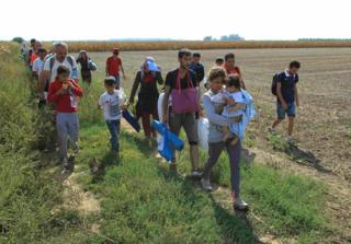 A group of migrants walk on the Serbian side of the border with Croatia, near the town of Sid.