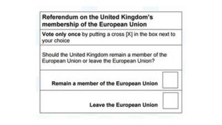 The EU referendum ballot paper