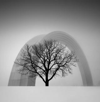 A tree stands in front of a huge sculptural arch
