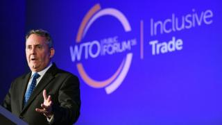 Dr Liam Fox addressing WTO