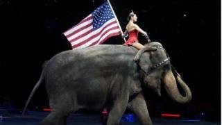 دختری با پرچم آمریکا در درست بروی فیلی از سیرک بارنوم و بیلی نشسته است
