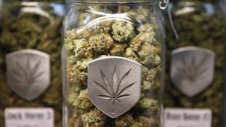 Cannabis strains on sale at a marijuana dispensary in Colorado
