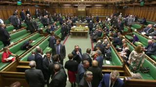 MPs voting