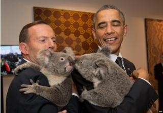G20 leaders meet a koala. Australia's Prime Minister Tony Abbott and United States' President Barack Obama meet Australian koalas before the start of the first G20 Leaders' Summit session on 15 November 2014.