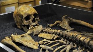 Un esqueleto guardado en el Museo de Londres