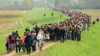 Migrants arriving in Slovenia from Croatia, 23 Oct 15