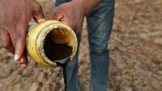 Les eaux et les terres des communautés Ogale et Bille ont été polluées par l'exploitation pétrolière