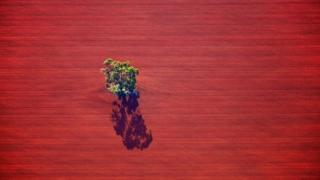Аэрофотосъемка позволяет увидеть необычную сторону жизни сельской Австралии.