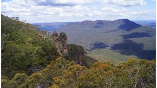 Road less area in Blue Mountains National Park, Australia