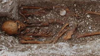 Extensive tests were carried out on the skeleton