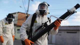 Health workers fumigate in an attempt to eradicate the mosquito which transmits the Zika virus on January 28, 2016 in Recife, Pernambuco state, Brazil.