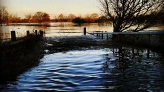 A water-filled field has an auburn colour in the glow of the sunrise. The gate to the field has water rising on it.