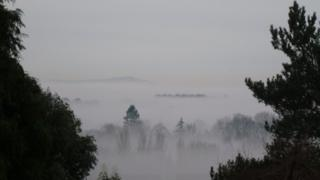 A thick fog fills the view with tree-tops poking out. The picture is flanked by the branches of two trees.