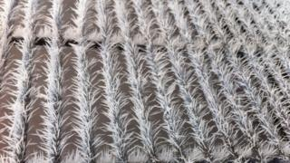 A metal fence has frost spikes sticking out all over it.