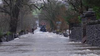 A tractor making its way through a flooded road. A man on a bicycle is also trying to get through, carrying a sheepdog under his arm.
