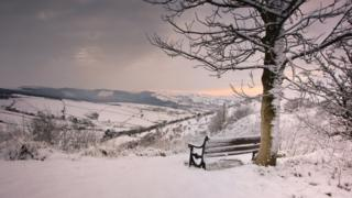 A bench beneath a tree faces a beautiful view of hills and fields. The whole scene looks very pretty, covered in snow.