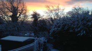Trees and a shed in a garden are covered in snow. Behind is a pink-yellow glow from the sunrise.