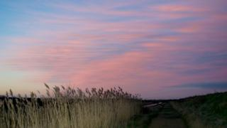 A blanket of pink cloud on the right side of the shot, blue sky coming through on the left. Below is a footpath and grasses.