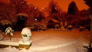 A garden covered in snow at night. The picture looks orange.