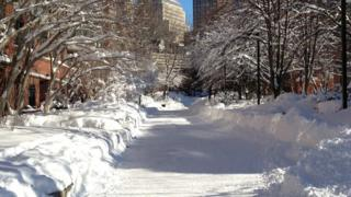 A path through trees and buildings behind. The whole scene is covered in lots of snow and it has been pushed to the sides of the path.