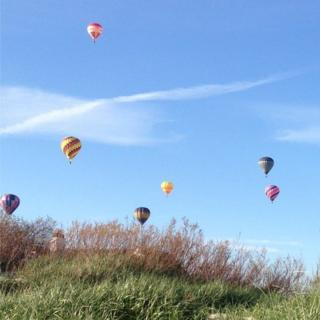 Hot air balloons in a clear blue sky.
