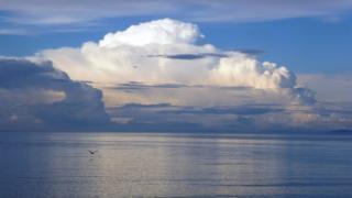 Large white clouds over sea. A bird flying over the sea