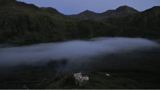 A layer of mist sits over some sheep. Behind are jagged mountains and a grey/blue morning sky.