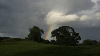 A rainbow coming down from a cloudy sky. Trees and grass below.