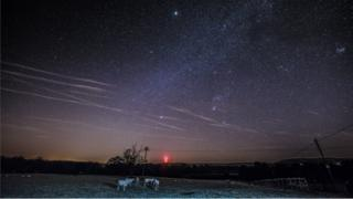 Stars in a night sky. Sheep on grass in the foreground.