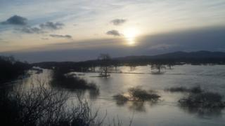 Water flooding fields. Branches and trees are poking out of the water. Grey sky above.