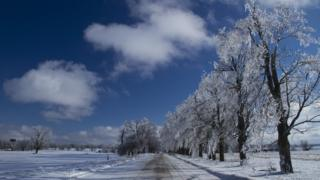 A white road in the centre of the shot. Frosted white trees line the right hand side. Blue sky with a few white clouds.