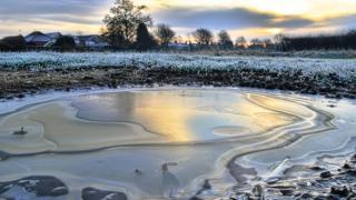 A close up of a frozen pond. Grass behind and houses and trees in the distance.