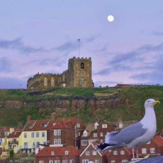 A full moon over a castle on a hillside. A seagull is in the foreground.