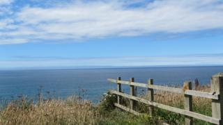 Clear blue sky over a deep blue sea. The water stretches out into the far horizon, illuminated by the bright clear sky. Grass and a fence lies in the foreground, as taken from a high cliff perspective.