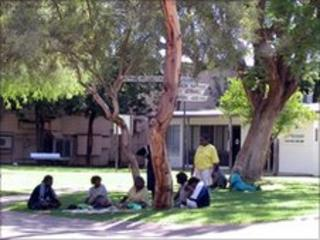 Aboriginal people gather beneath a tree in Alice Springs (file photo)