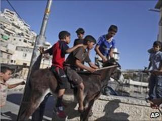 Palestinian boys play with a donkey in Silwan, East Jerusalem, 22 June