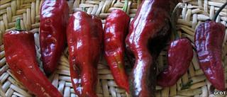 "San Juan ""Tsile"" chillies (Image: GCDT)"