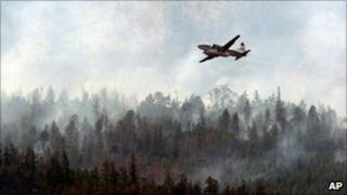 A Conair waterbomber similar to the one that crashed - file photo