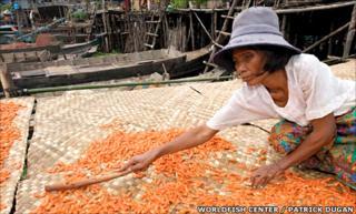Fisheries worker