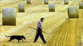 A German farmer - file pic