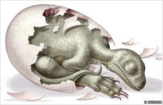An artist's impression of what the dinosaurs might have looked like