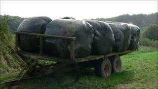Plastic covered bales