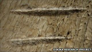 Bone marks (Dikika Research Project)