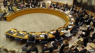 UNSC meeting, 25/02/11