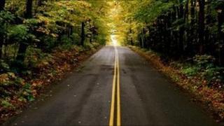 road through a wood