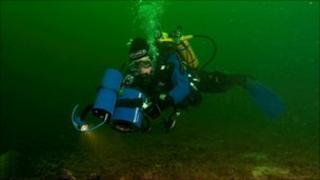 Diver surveying