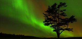 Northern Lights viewed from Ontario