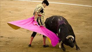 Bullfighter Jose Tomas
